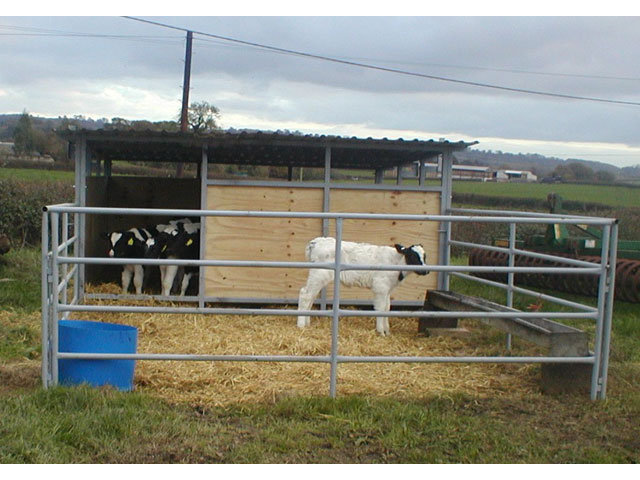 Livestock Handling Symms Fabrication Agricultural And